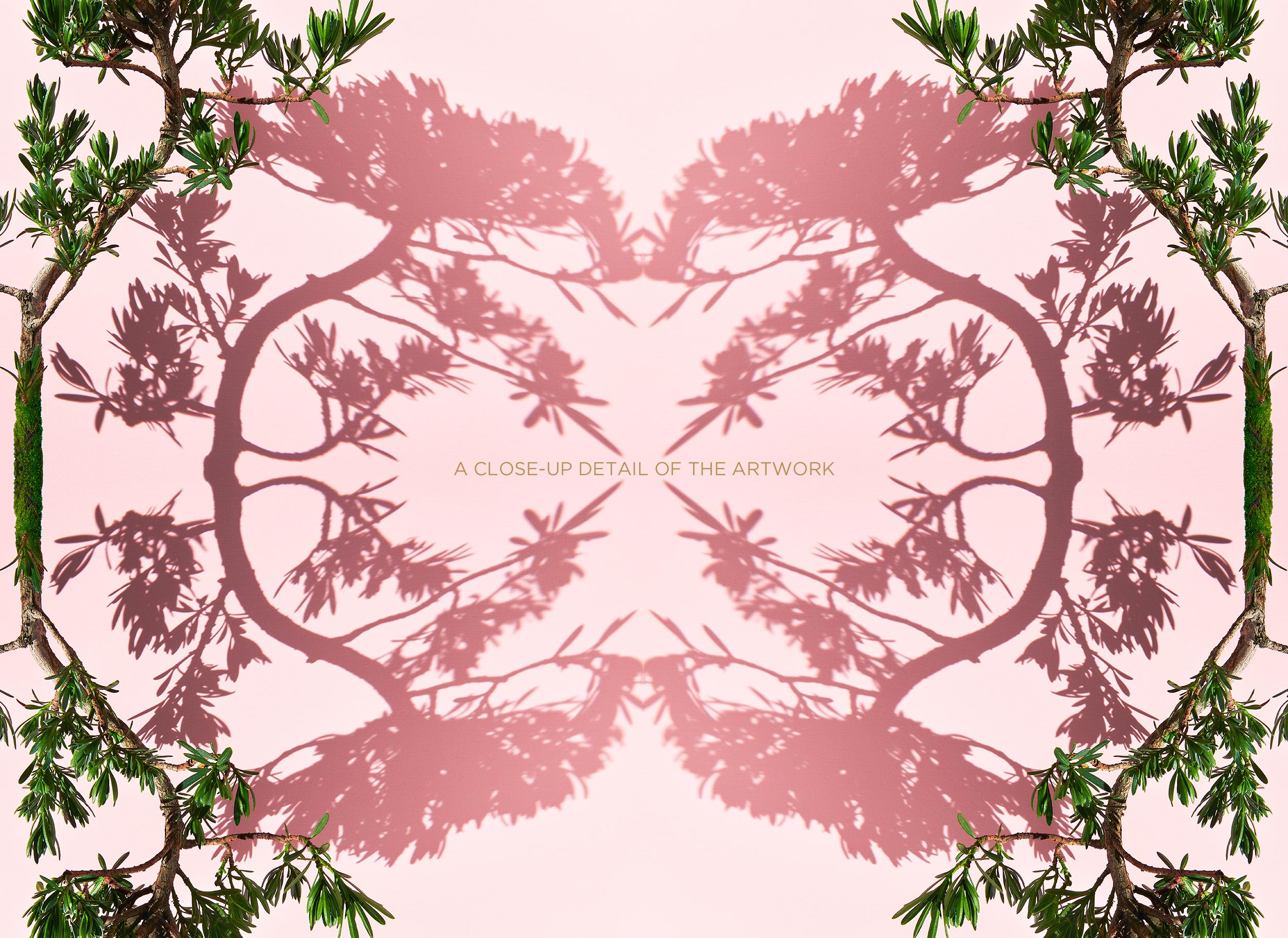 "<a href=""https://mrsteel.london/shop/bonsai/ "">REVEAL DETAILS / BUY</a>"